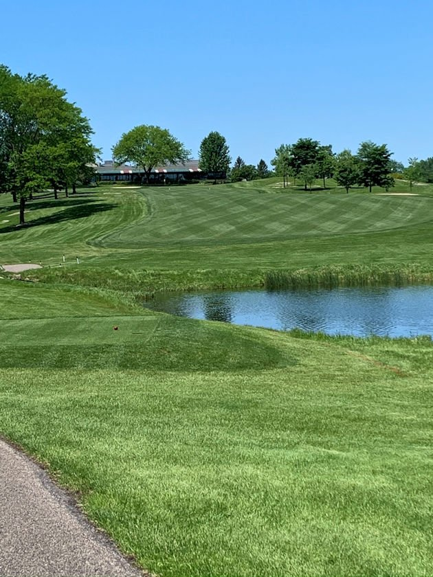 Striped mowing on fairway shows off the purity of the new low-mow bluegrass sod